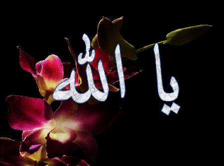 طریقه ختم ذکر یا الله, ختم ذکر یا الله, روش ختم ذکر یا الله